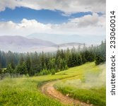 slope of mountain range with pine forest and path. collage - stock photo
