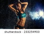 young slim sexy brunette pole...   Shutterstock . vector #233254903