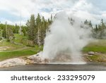 Powerful eruption of the Riverside Geyser on the Firehole River in  Yellowstone National Park