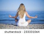 beautiful positiveblond girl... | Shutterstock . vector #233331064