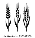 vector black illustration of... | Shutterstock .eps vector #233387500