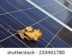 Solar Panels In Autumn