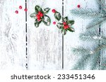 frame with european holly  ilex ... | Shutterstock . vector #233451346