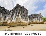 Oceanside Limestone Rock...