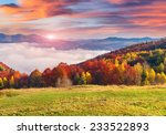 colorful autumn morning in the... | Shutterstock . vector #233522893
