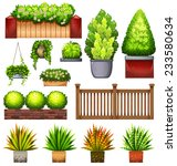 Set Of Different Plants On A...
