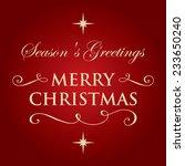 stylish christmas greeting card.... | Shutterstock .eps vector #233650240