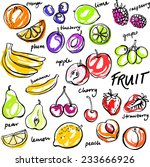 group of fresh fruit doodle... | Shutterstock .eps vector #233666926