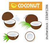 coconut vector flat simple... | Shutterstock .eps vector #233691286