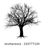 an illustration of a bare tree...