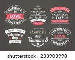 calligraphic design elements... | Shutterstock .eps vector #233903998