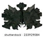 rorschach inkblot test... | Shutterstock . vector #233929084