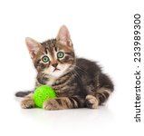 Stock photo cute little kitten with thread ball isolated on white background 233989300
