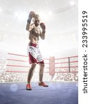 professional boxer is training... | Shutterstock . vector #233995519