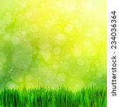 natural theme. high resolution... | Shutterstock . vector #234036364