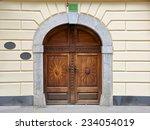 medieval engraved wooden door... | Shutterstock . vector #234054019