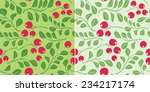 light green pattern with... | Shutterstock .eps vector #234217174