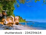 ocean shore with trees and... | Shutterstock . vector #234254614