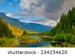 buttle lake on vancouver island ... | Shutterstock . vector #234254620