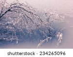 Abstract Frozen Bush   Thick...