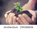 hand and plant heart.  | Shutterstock . vector #234268636