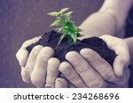 hand and plant heart.  | Shutterstock . vector #234268696
