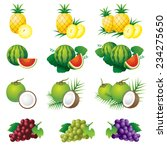 pineapple  watermelon  coconut  ... | Shutterstock .eps vector #234275650
