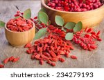 barberry and dry goji berries... | Shutterstock . vector #234279193