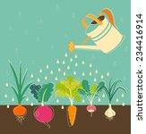 garden watering concept with... | Shutterstock .eps vector #234416914