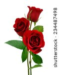 A Three Red Roses Isolated White