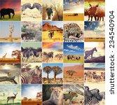 african safari collages | Shutterstock . vector #234540904