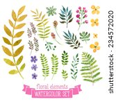 vector floral set. colorful... | Shutterstock .eps vector #234572020