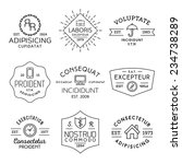 collection monochrome hipster... | Shutterstock .eps vector #234738289