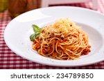 spaghetti bolognese | Shutterstock . vector #234789850