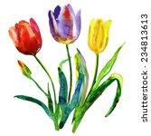 Flowers. Watercolor Hand...