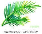 palm tree watercolor original... | Shutterstock .eps vector #234814069