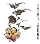 drawing fancy flower  painting... | Shutterstock . vector #234834310