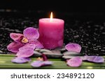 still life with orchid and ... | Shutterstock . vector #234892120