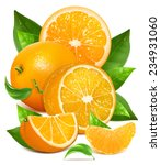 fresh ripe oranges with green... | Shutterstock .eps vector #234931060