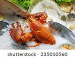 Close Up Image Of Fresh Seafood ...