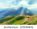 Landscape Rice Fields On...