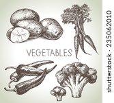 hand drawn sketch vegetable set.... | Shutterstock .eps vector #235062010