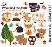 Stock vector woodland animal vector set 235269559