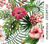 Stock photo hawaii background watercolor 235289713