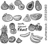 selection tropical fruit vector ... | Shutterstock .eps vector #235510483