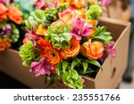 Gerbera  Tulips And Mix Of...
