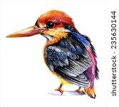 watercolor style vector...   Shutterstock .eps vector #235630144