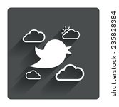 bird icon. social media sign....