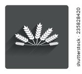 agricultural sign icon. wheat...