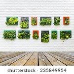Vertical Garden On White Brick...